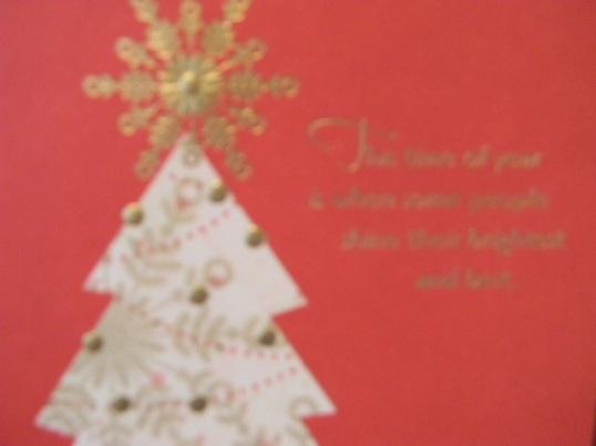 Christmas 2012 485