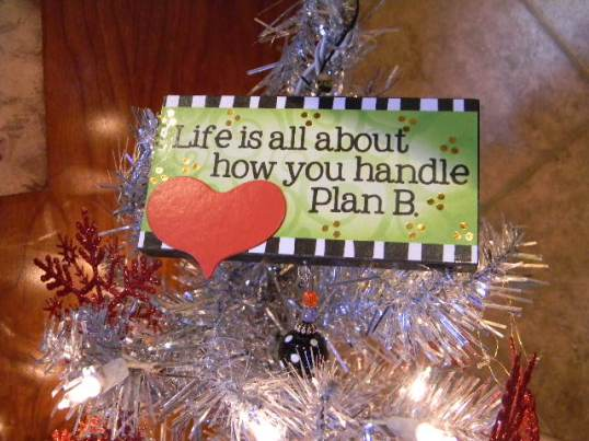 Christmas 2012 494