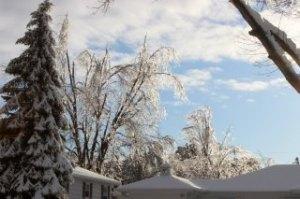 Sioux Falls Ice Storm. Photos by Cindy Cummins